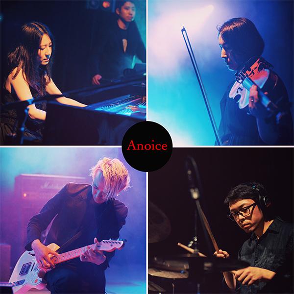 anoice 05